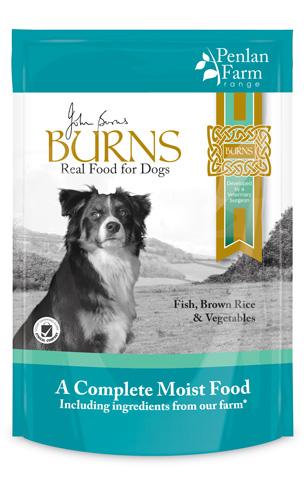 Burns Fish Brown Rice & Veg 400g