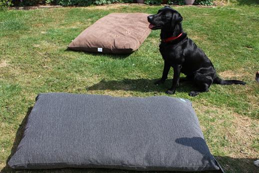 Gorpets Divani Comfy Cushion Large (76 x 117cm) Mocha