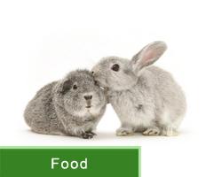 Small Animals Food