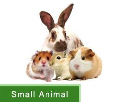 Small Animals Healthcare